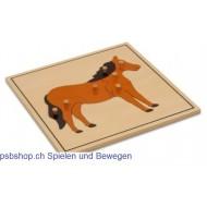 Das Pferd - Holzpuzzlekarte in der Größe 24 x 24 cm