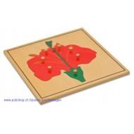 Die Blüte - Holzpuzzlekarte in der Größe 24 x 24 cm