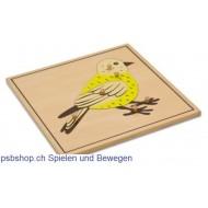 Der Vogel - Holzpuzzlekarte in der Größe 24 x 24 cm