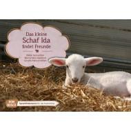 Das kleine Schaf Ida findet Freunde. Kamishibai Bildkartenset