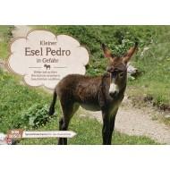 Kleiner Esel Pedro in Gefahr. Kamishibai Bildkartenset.