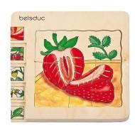 Erdbeere, Lagenpuzzle 30 Teile, Vorstellungen zur Entwicklung von Pflanzen entwickeln